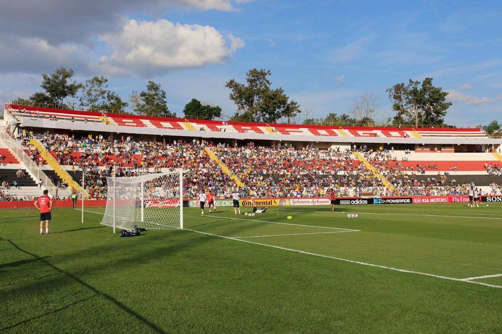 Gramado do Santa Cruz é  um dos melhores do Brasil (Foto: Roger Morotti/Agência Botafogo)