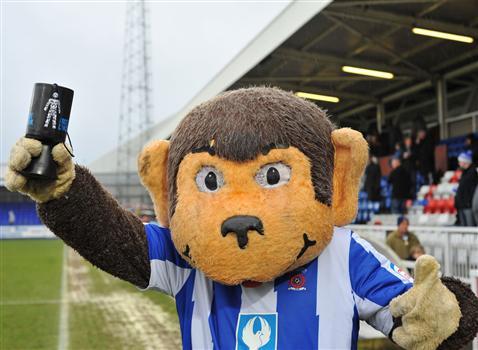 H'Angus, o macaco que anima os torcedores do Hartlepool (Foto: Divulgação/Hartlepool)